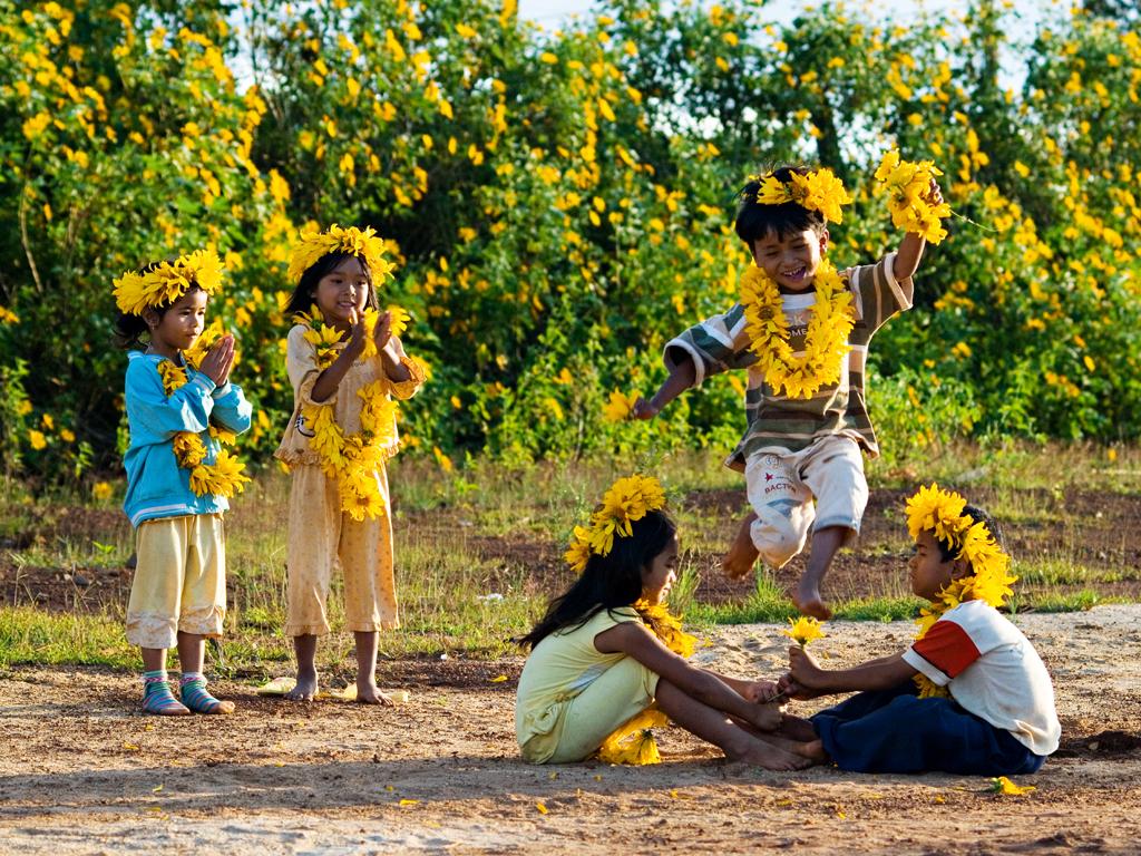 (Tiếng Việt) Đà Lạt Đẹp Ngỡ Ngàng Qua Những Mùa Hoa